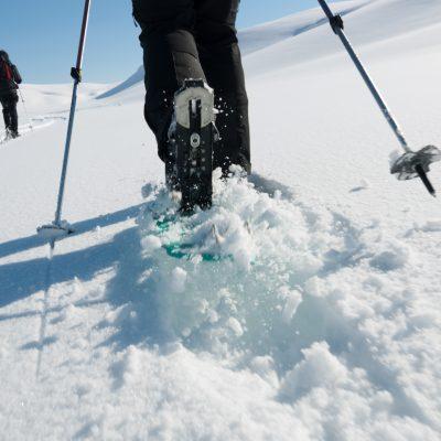 D6 - this is snowshoeing!  (met dank aan buitenbeentje Sanne)
